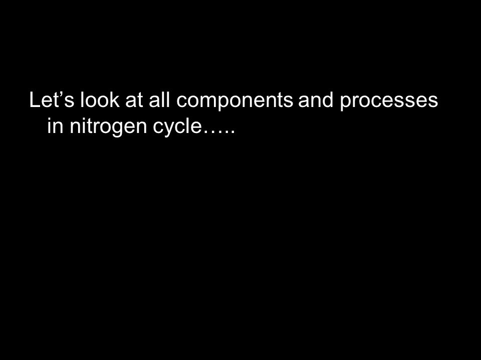 Let's look at all components and processes in nitrogen cycle…..