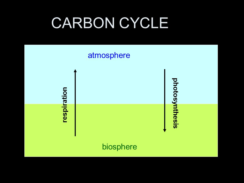 CARBON CYCLE atmosphere biosphere respiration photosynthesis