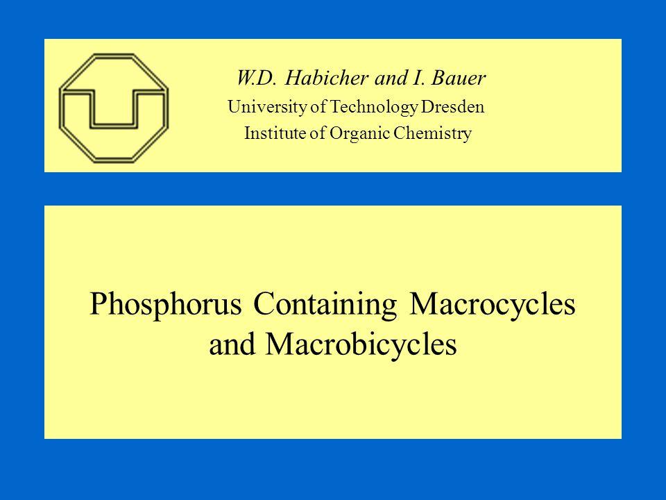 Phosphorous Amide Method II -Asymmetric P-Macrocycles as Unstable Intermediates- - Formation of Symmetric P-Macrocycles and Open Chain Products-