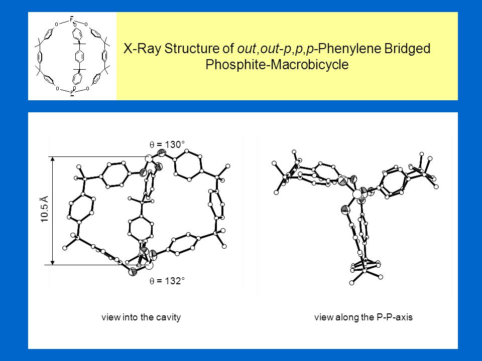 X-Ray Structure of out,out-p,p,p-Phenylene Bridged Phosphite-Macrobicycle view into the cavityview along the P-P-axis 10.5 Å  = 130°  = 132°