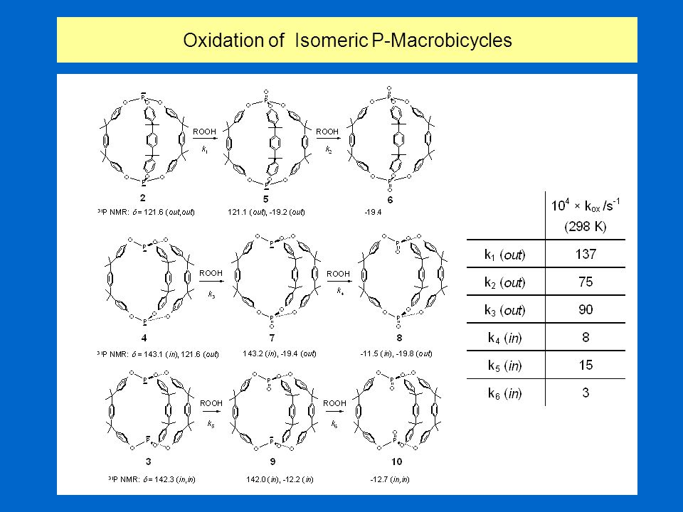Oxidation of Isomeric P-Macrobicycles