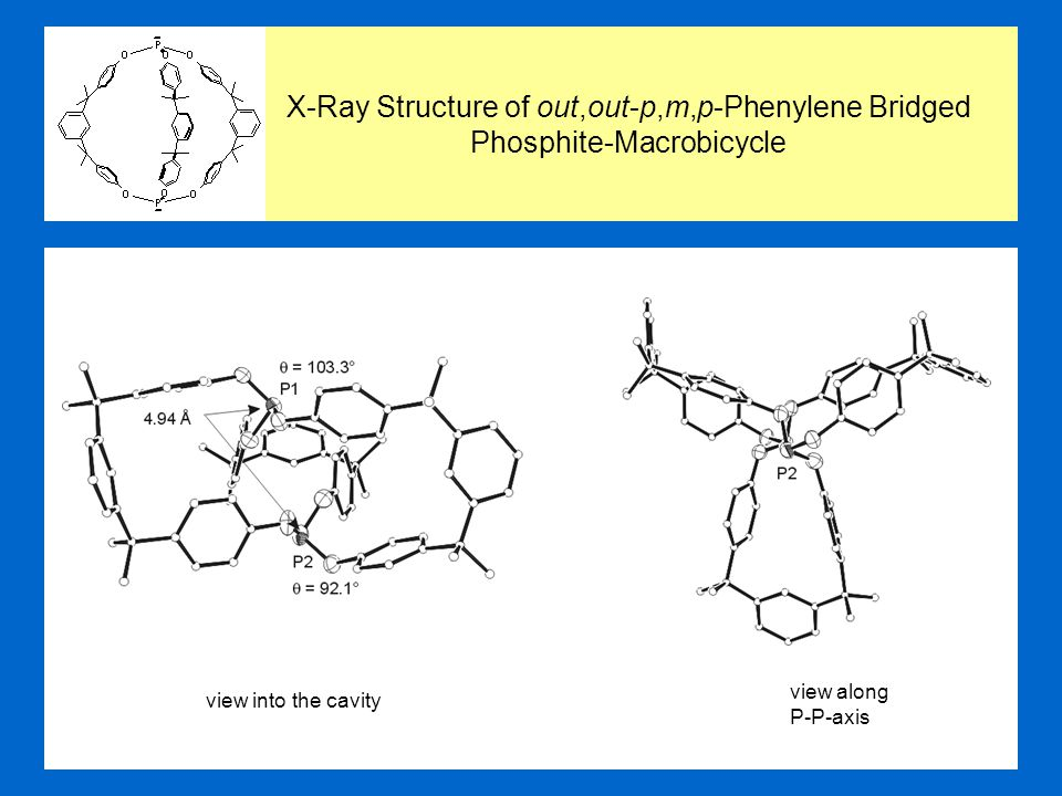 view into the cavity view along P-P-axis X-Ray Structure of out,out-p,m,p-Phenylene Bridged Phosphite-Macrobicycle