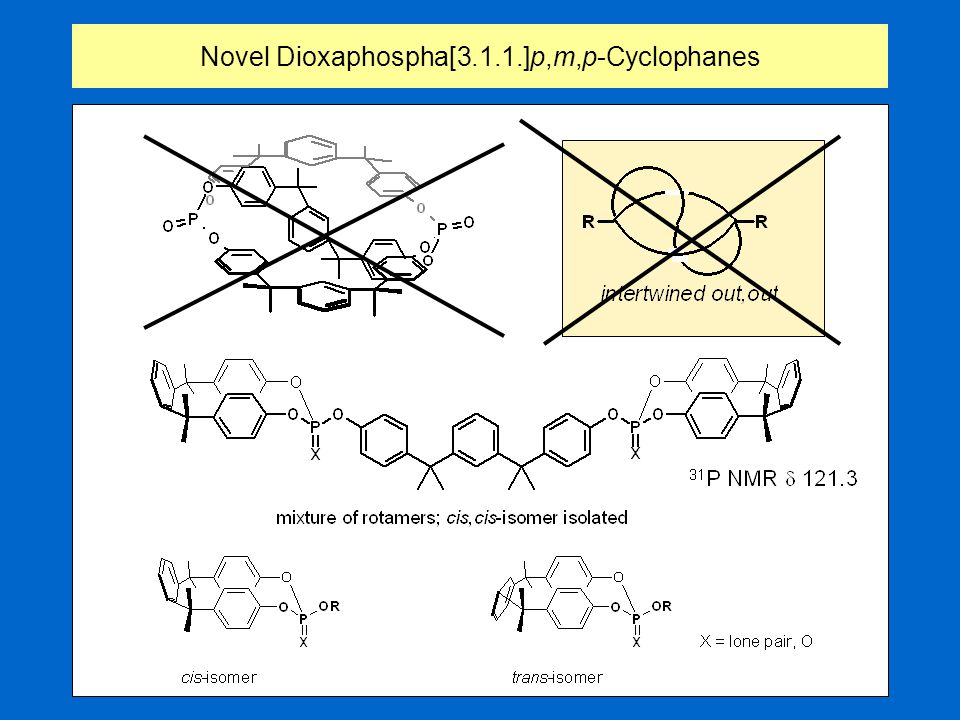 Intertwined out,out-conformer ???Novel Dioxaphospha[3.1.1.]p,m,p-Cyclophanes