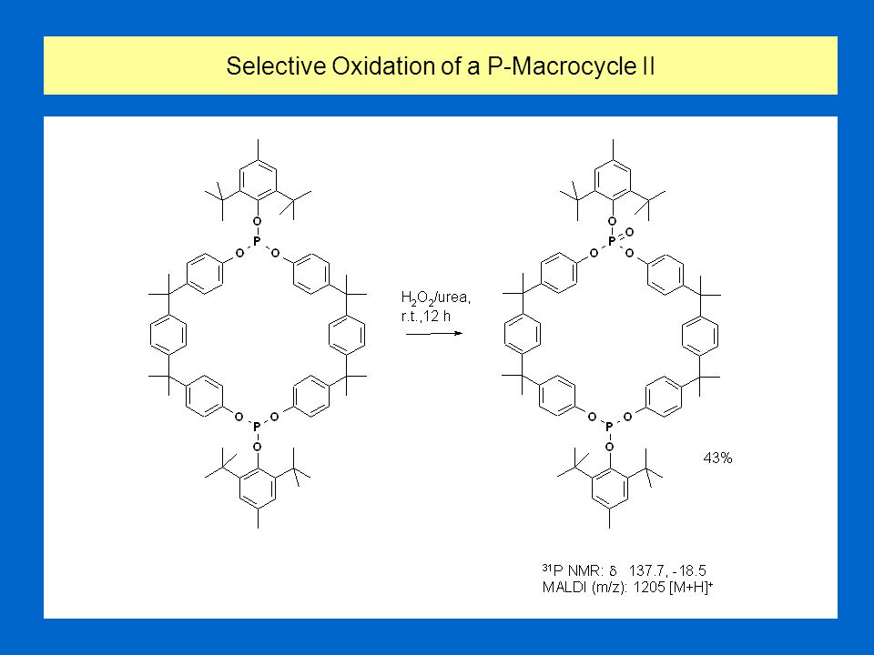 Selective Oxidation of a P-Macrocycle II