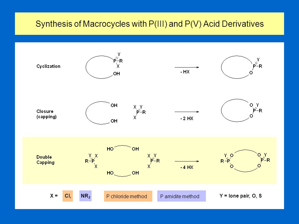 Synthesis of Macrocycles with P(III) and P(V) Acid Derivatives X = Cl, NR 2 Y = lone pair, O, S P chloride methodP amidite method