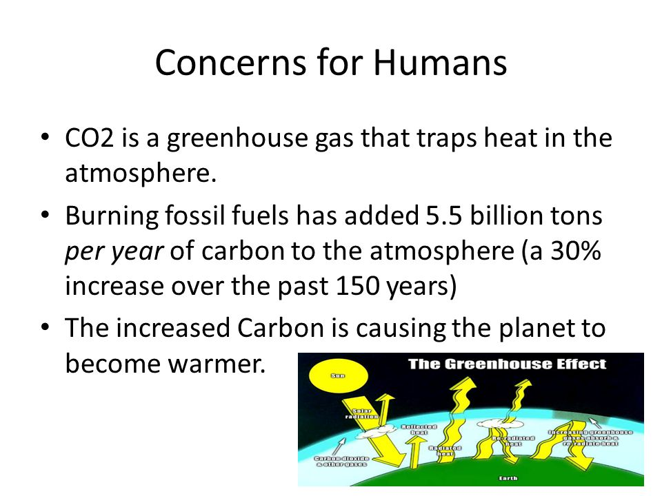Concerns for Humans CO2 is a greenhouse gas that traps heat in the atmosphere.