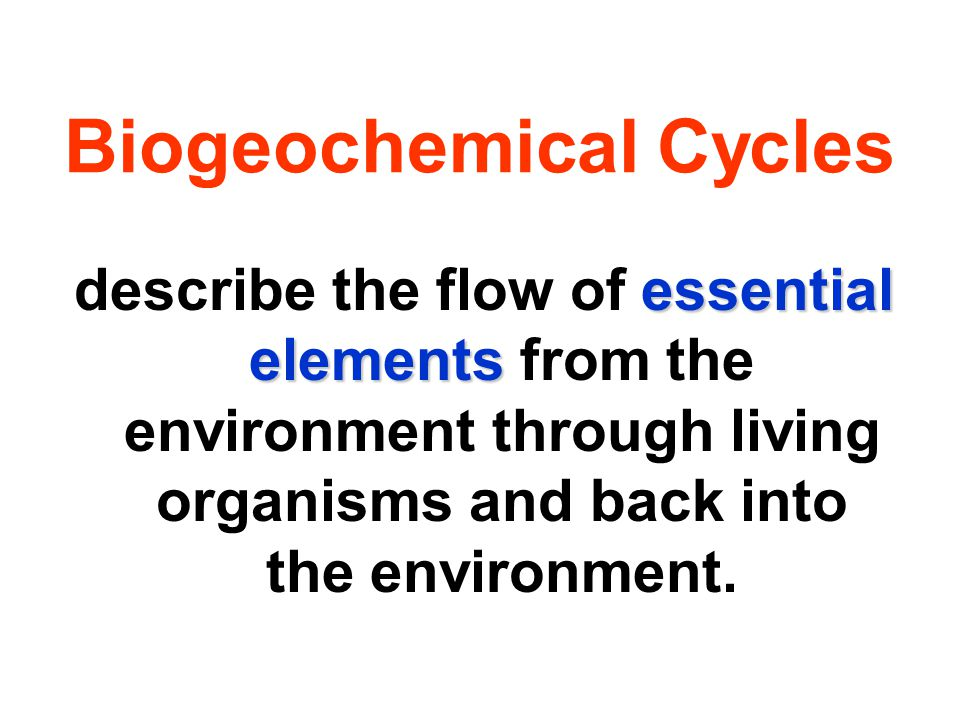 essential elements describe the flow of essential elements from the environment through living organisms and back into the environment.