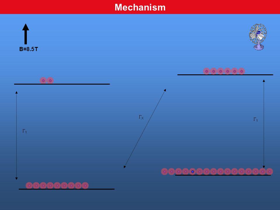 XX B=8.5T 11 11 Mechanism