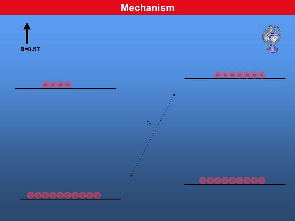 B=8.5T XX Mechanism