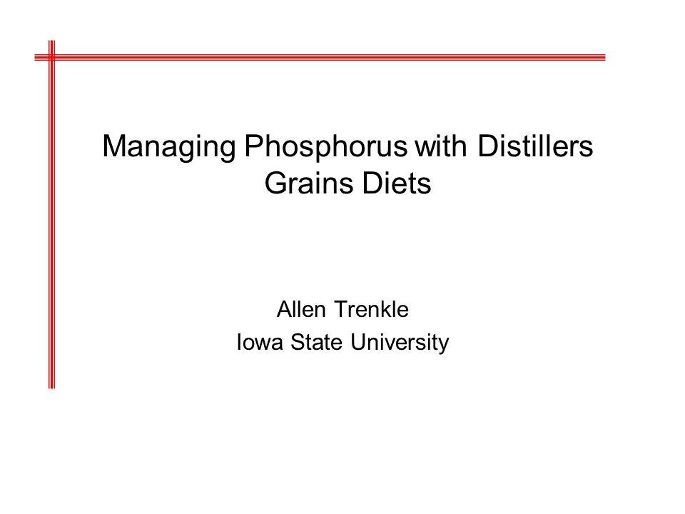 Managing Phosphorus with Distillers Grains Diets Allen Trenkle Iowa State University