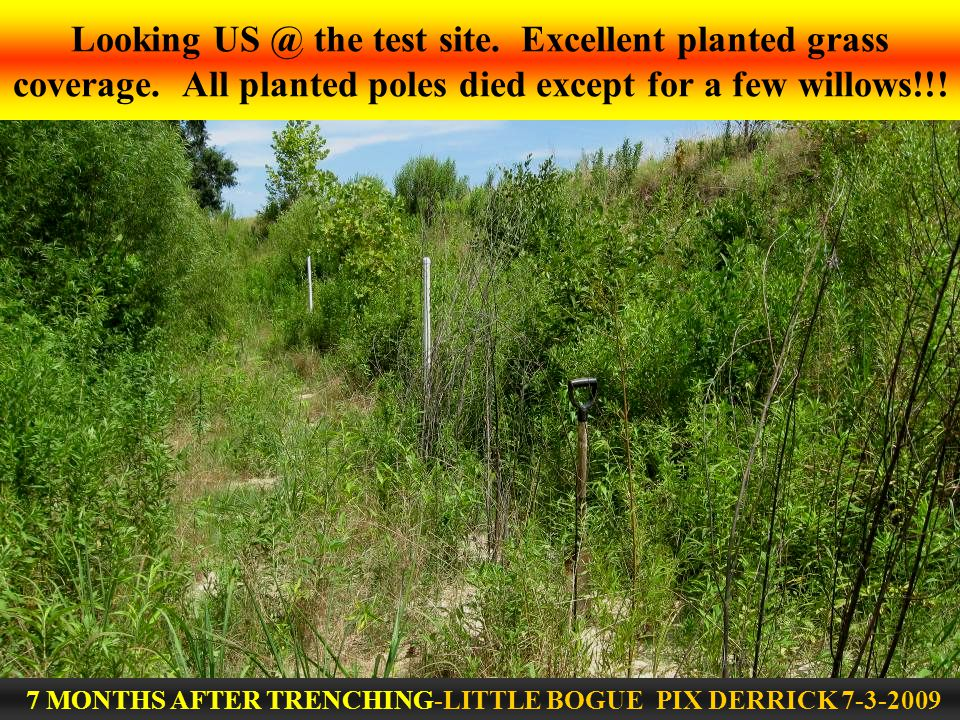 Looking US @ the test site. Excellent planted grass coverage.