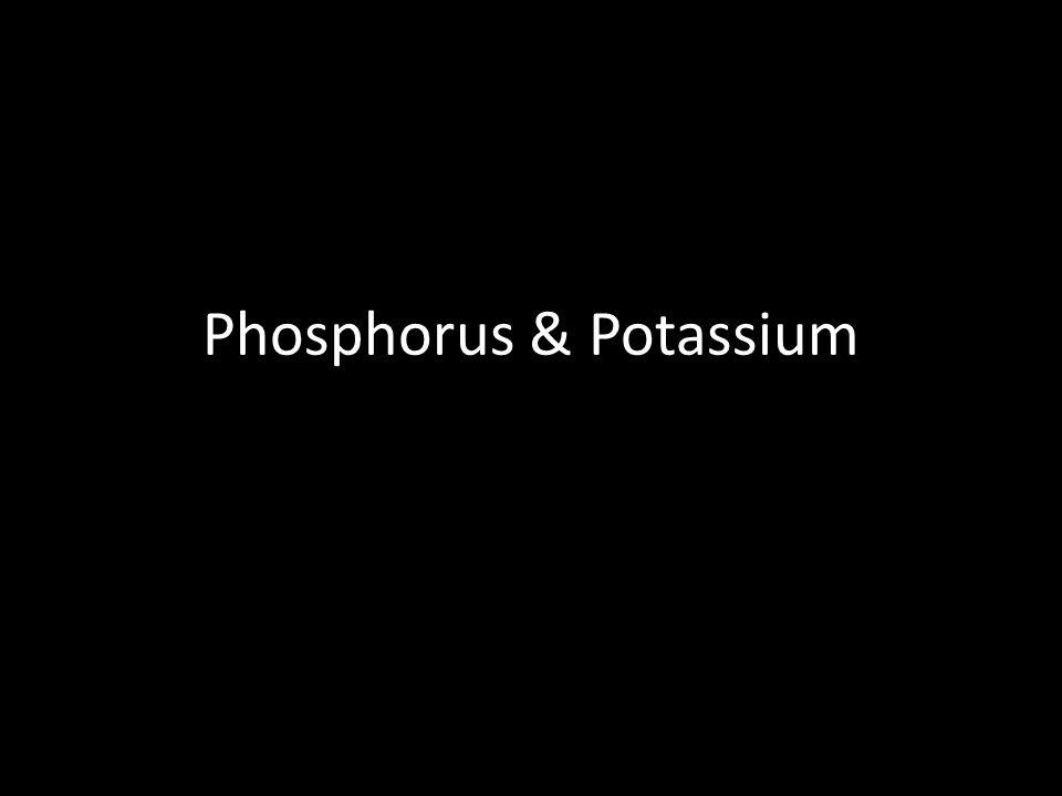 Phosphorus & Potassium