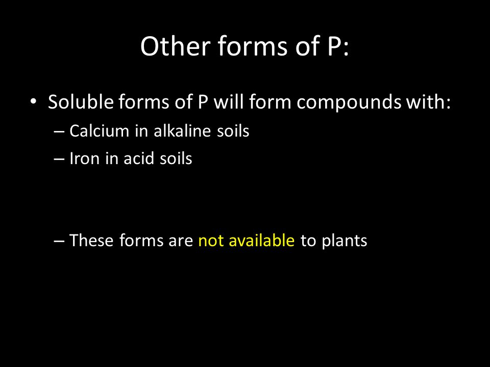 Other forms of P: Soluble forms of P will form compounds with: – Calcium in alkaline soils – Iron in acid soils – These forms are not available to plants
