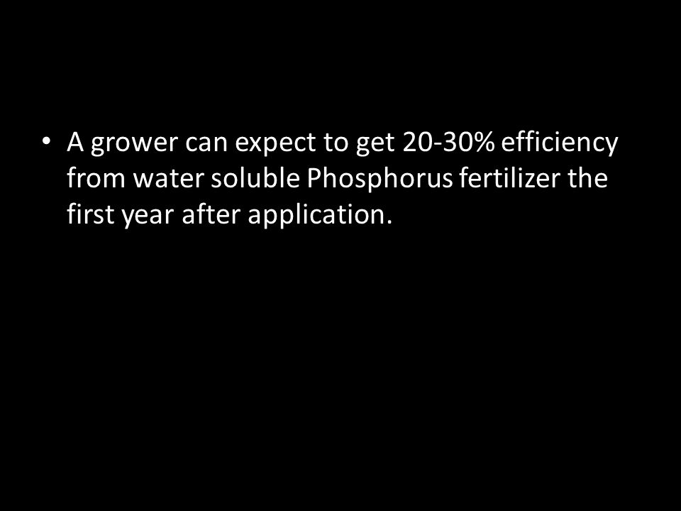A grower can expect to get 20-30% efficiency from water soluble Phosphorus fertilizer the first year after application.