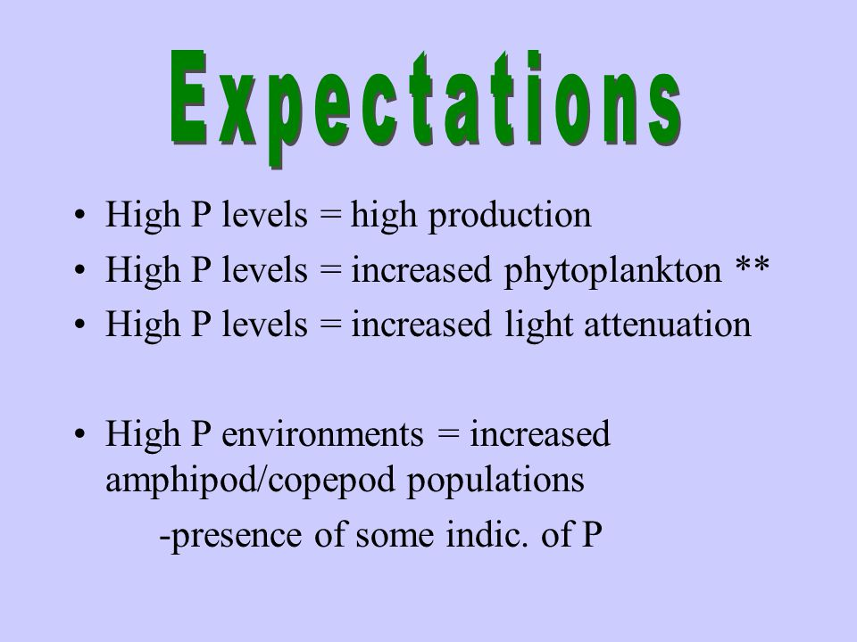 High P levels = high production High P levels = increased phytoplankton ** High P levels = increased light attenuation High P environments = increased amphipod/copepod populations -presence of some indic.
