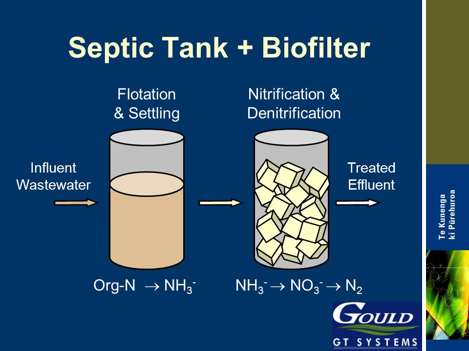 Septic Tank + Biofilter Flotation & Settling Org-N  NH 3 - Nitrification & Denitrification NH 3 -  NO 3 -  N 2 Influent Wastewater Treated Effluent