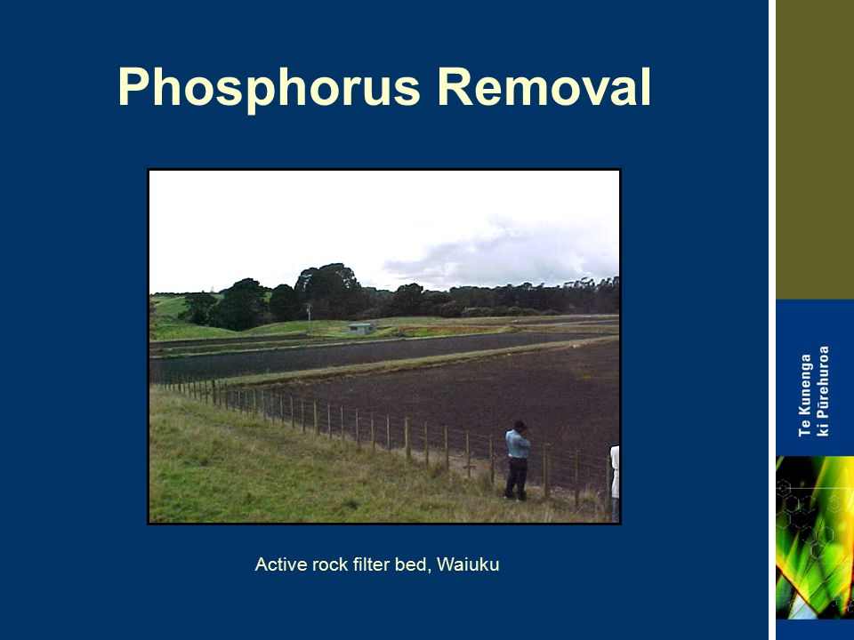 Phosphorus Removal Active rock filter bed, Waiuku