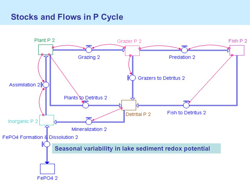 Stocks and Flows in P Cycle Seasonal variability in lake sediment redox potential