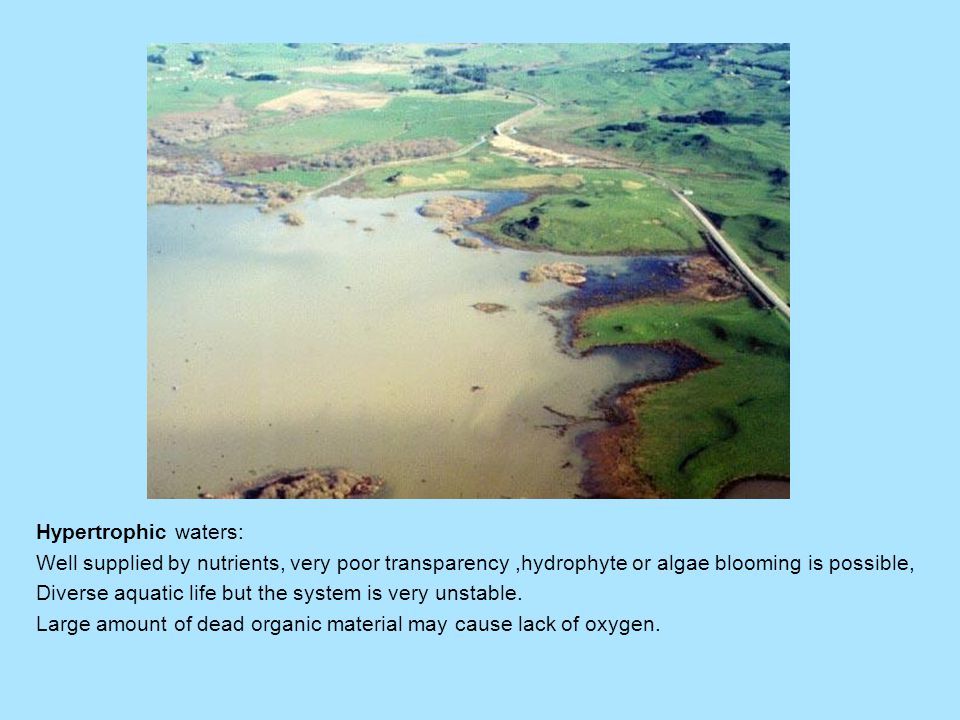 Hypertrophic waters: Well supplied by nutrients, very poor transparency,hydrophyte or algae blooming is possible, Diverse aquatic life but the system is very unstable.