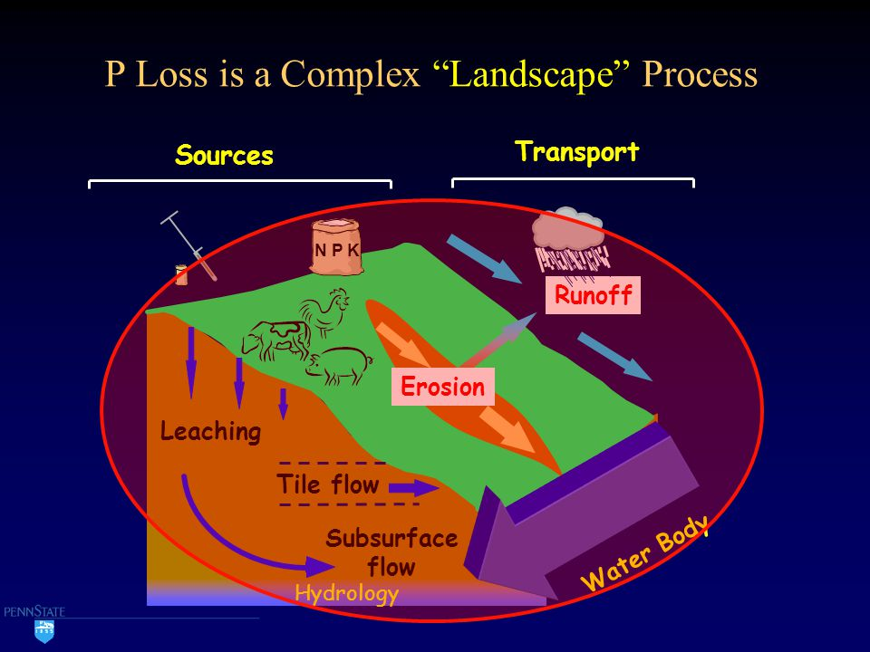 "P Loss is a Complex ""Landscape"" Process Subsurface flow Tile flow Leaching Sources Transport Erosion Runoff N P K Hydrology Water Body"