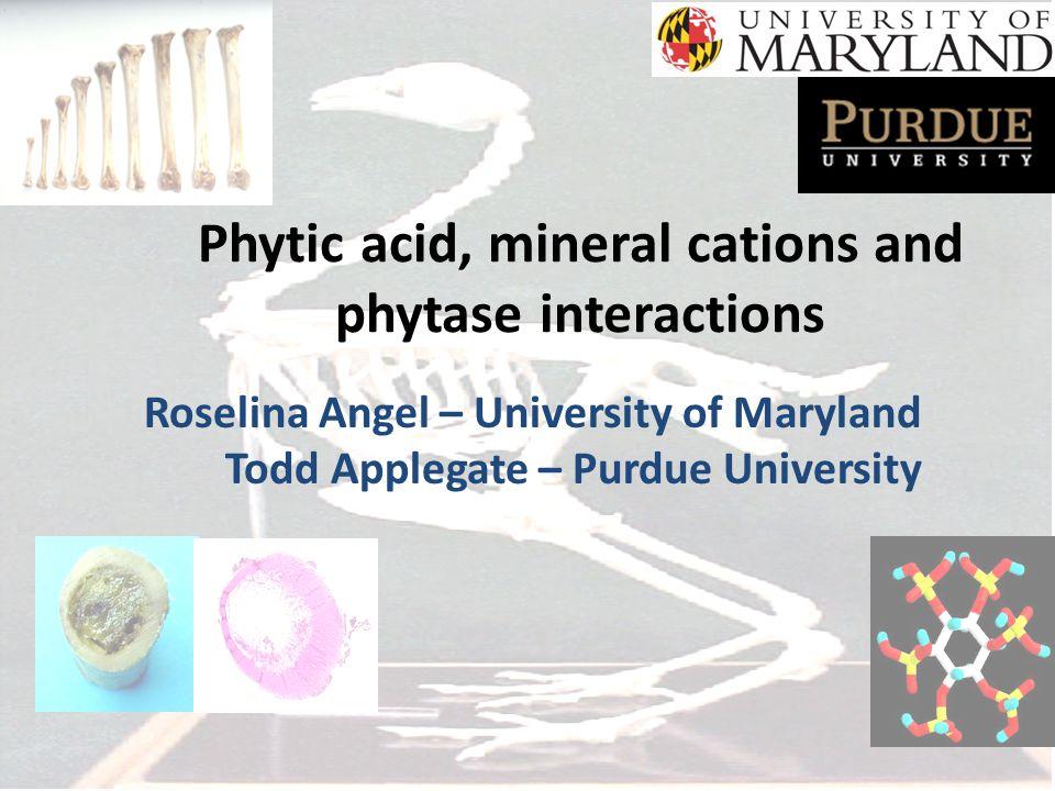 2 mmol phytic acid+ 30 mmol Calcium [corn/SBM St diet phytic acid content+ 0.9% Ca (2:1; H 2 0:diet)] 100 100 100 97.9 84.7 62.1 51.7 26.4 11.1 7.9 1.5 % of the phytic acid P in solution Angel, 2007