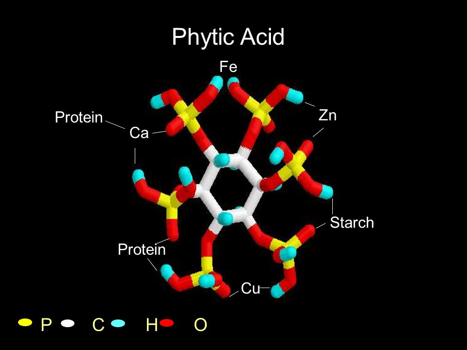 Cation Impairment of P hydrolysis vs. Cation release capacity of phytase