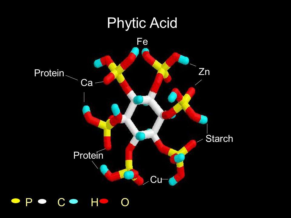 2 mmol Phytic Acid+ 30 mmol Calcium [Corn/SBM St diet phytic acid content + 0.9% Ca (2:1; H 2 0:diet)] 100 100 100 97.9 84.7 62.1 51.7 26.4 11.1 7.9 1.5 % of the phytic acid P in solution Angel, 2007 Proventriculus/ Gizard Proximal duodenum Distal duodenum to Ileum