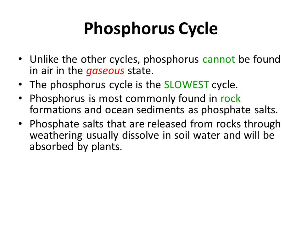 Unlike the other cycles, phosphorus cannot be found in air in the gaseous state.