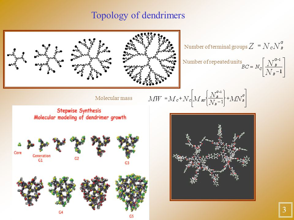3 Number of terminal groups Number of repeated units Molecular mass Topology of dendrimers