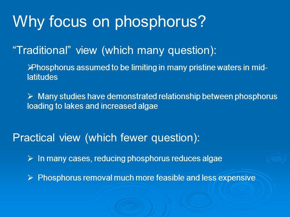 Why focus on phosphorus.
