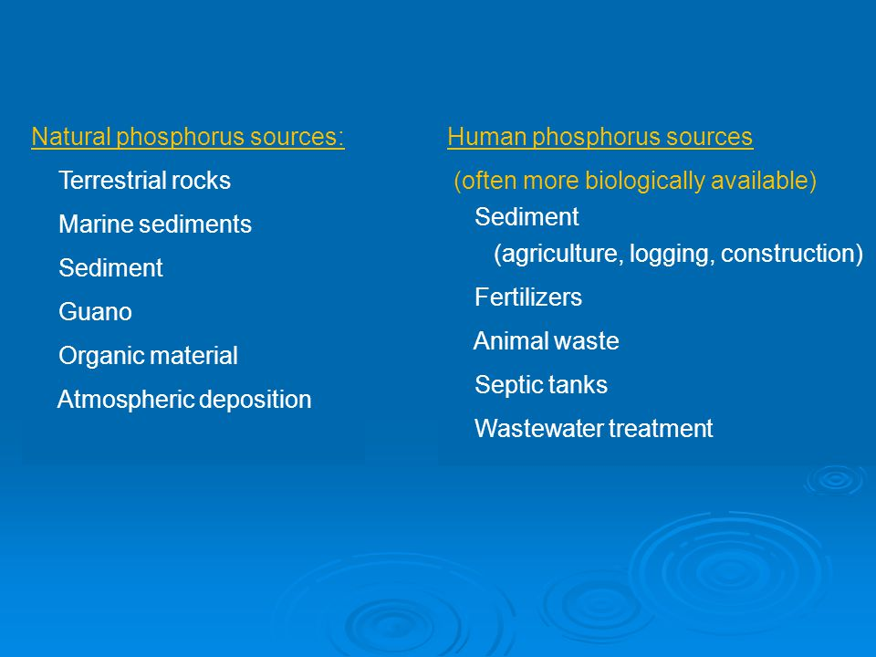 Natural phosphorus sources: Terrestrial rocks Marine sediments Sediment Guano Organic material Atmospheric deposition Human phosphorus sources (often more biologically available) Sediment (agriculture, logging, construction) Fertilizers Animal waste Septic tanks Wastewater treatment