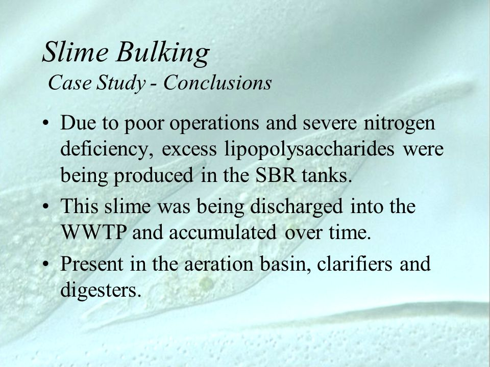 Slime Bulking Case Study - Conclusions Due to poor operations and severe nitrogen deficiency, excess lipopolysaccharides were being produced in the SB