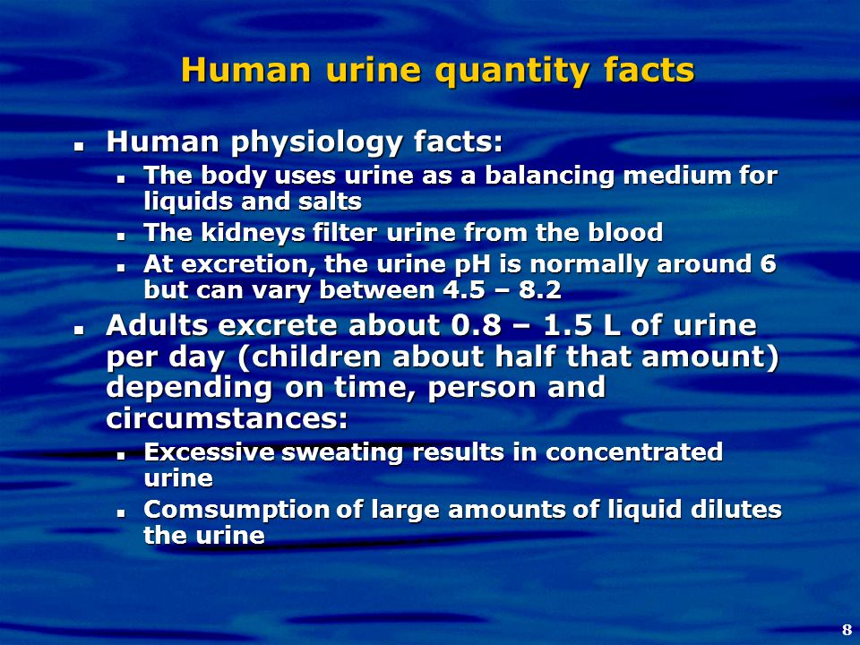 8 Human urine quantity facts Human physiology facts: Human physiology facts: The body uses urine as a balancing medium for liquids and salts The body
