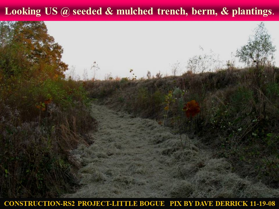 Looking US @ seeded & mulched trench, berm, & plantings.