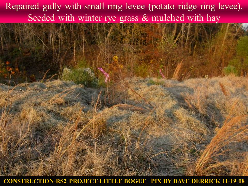 Repaired gully with small ring levee (potato ridge ring levee).
