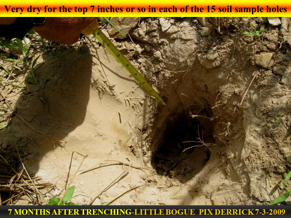 Very dry for the top 7 inches or so in each of the 15 soil sample holes 7 MONTHS AFTER TRENCHING-LITTLE BOGUE PIX DERRICK 7-3-2009