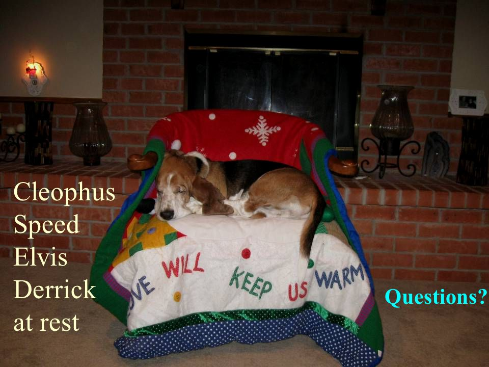 Questions Cleophus Speed Elvis Derrick at rest