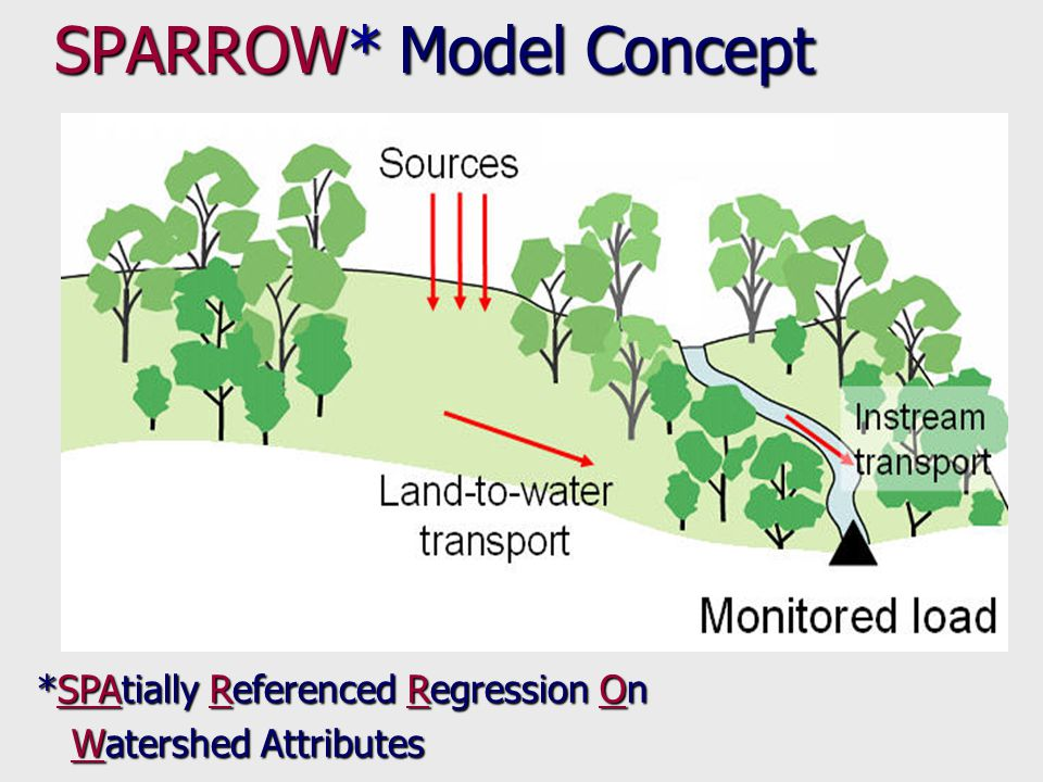 Load Sources Land-to-water delivery Instream decay Error SPARROW Budget Equation Spatial non-linear regression Adjusts land and stream delivery factors on the basis of basin-wide statistical relationships Minimizes errors at monitoring sites
