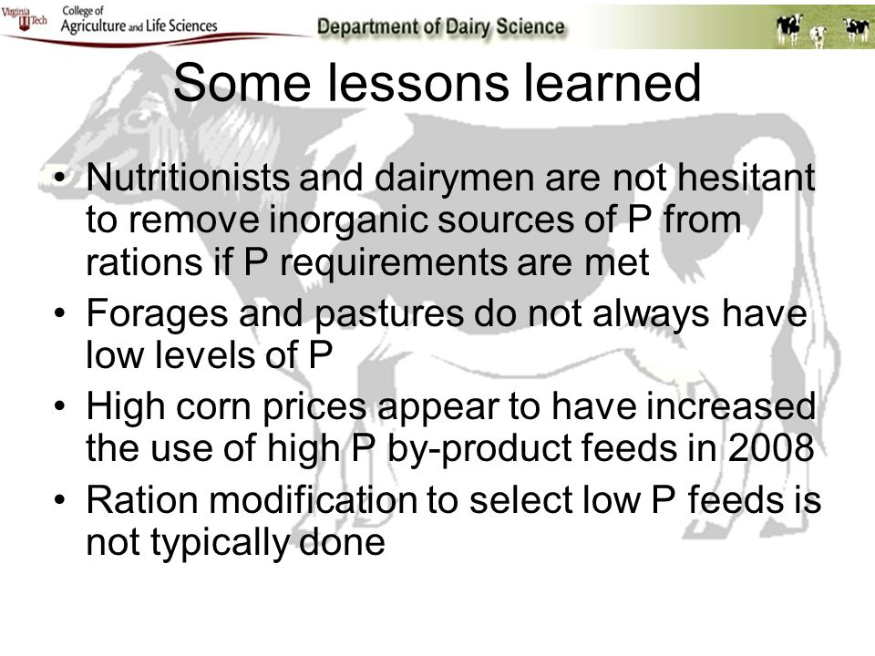 Some lessons learned Nutritionists and dairymen are not hesitant to remove inorganic sources of P from rations if P requirements are met Forages and p