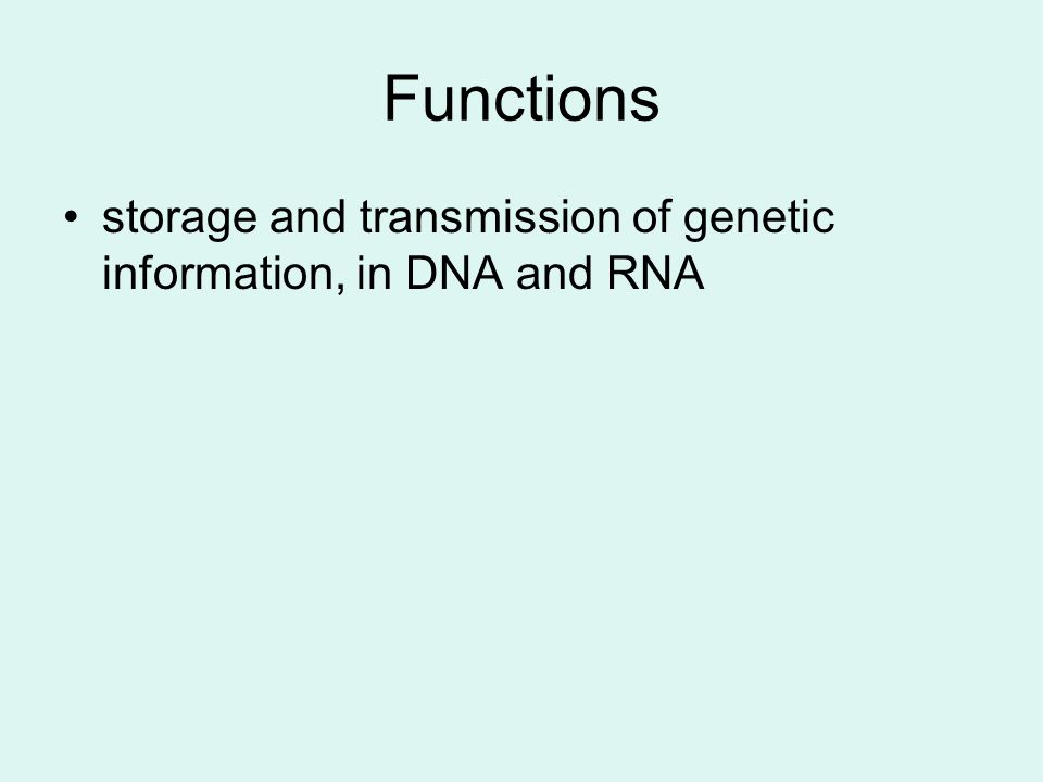 Functions storage and transmission of genetic information, in DNA and RNA