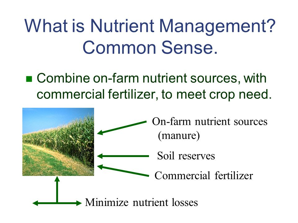 What is Nutrient Management.Common Sense.