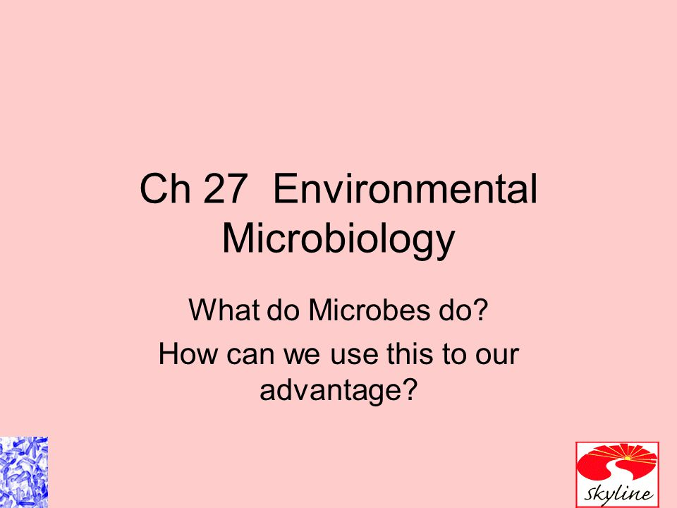 Ch 27 Environmental Microbiology What do Microbes do? How can we use this to our advantage?
