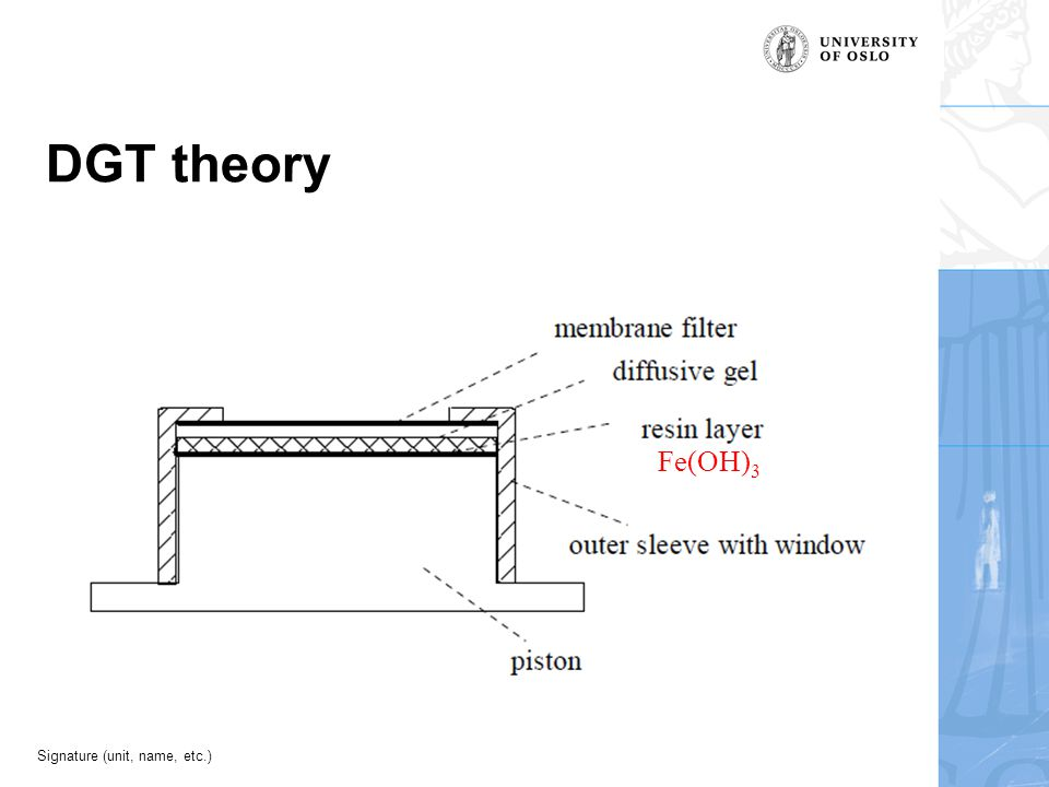 Signature (unit, name, etc.) DGT theory Fe(OH) 3