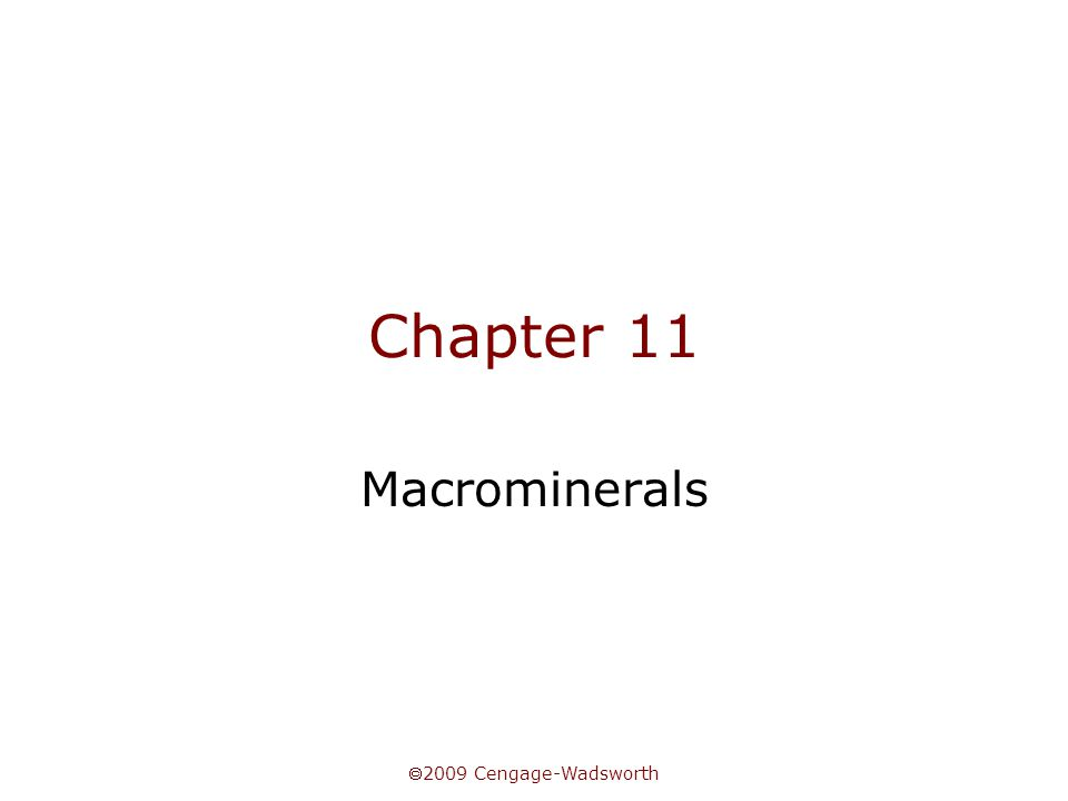  2009 Cengage-Wadsworth Chapter 11 Macrominerals