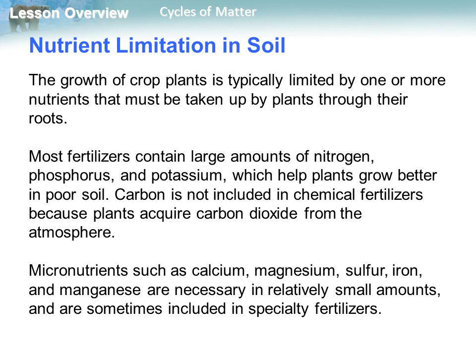 Lesson Overview Lesson Overview Cycles of Matter Nutrient Limitation in Soil The growth of crop plants is typically limited by one or more nutrients t