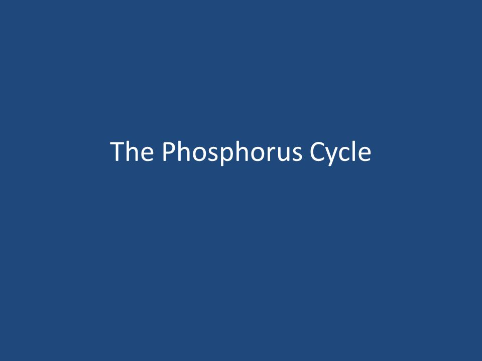 Phosphorus is an essential nutrient for plants and animals in the form of ions PO43- and HPO42-.