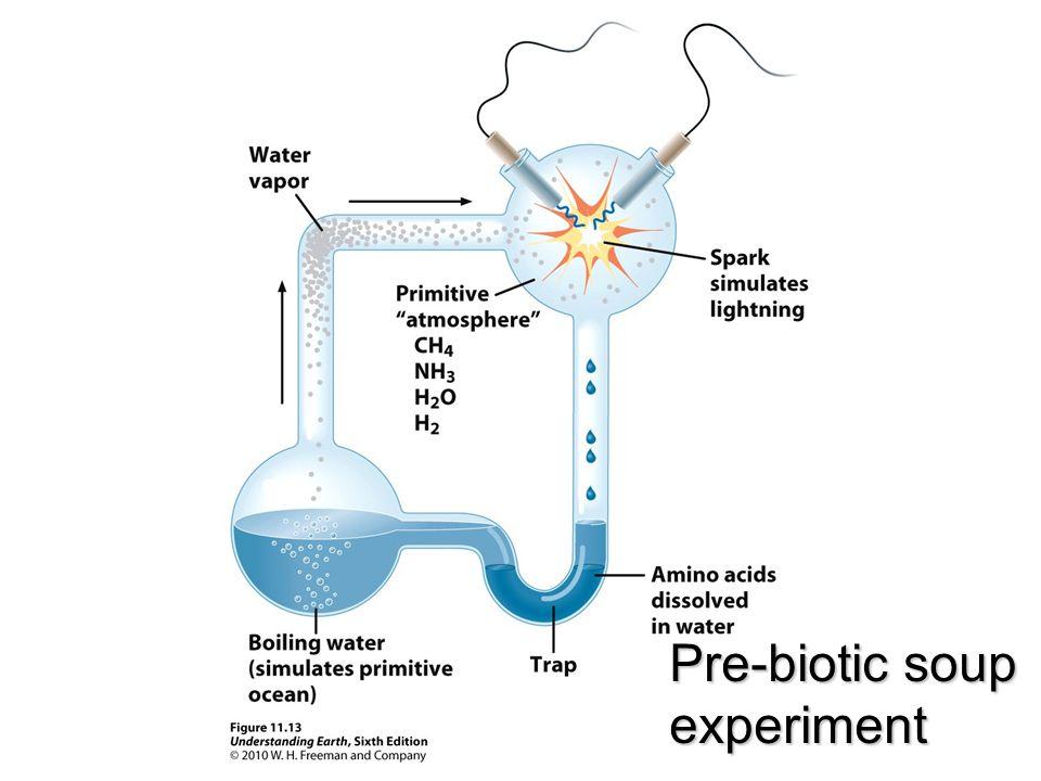 Pre-biotic soup experiment