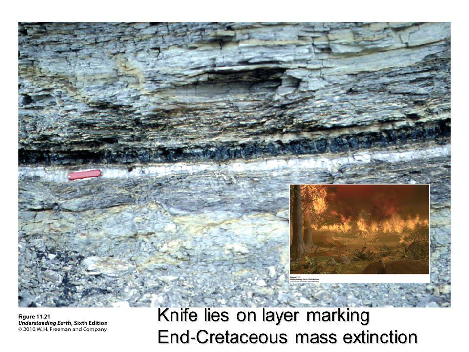 Knife lies on layer marking End-Cretaceous mass extinction