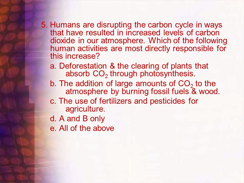 5. Humans are disrupting the carbon cycle in ways that have resulted in increased levels of carbon dioxide in our atmosphere. Which of the following h