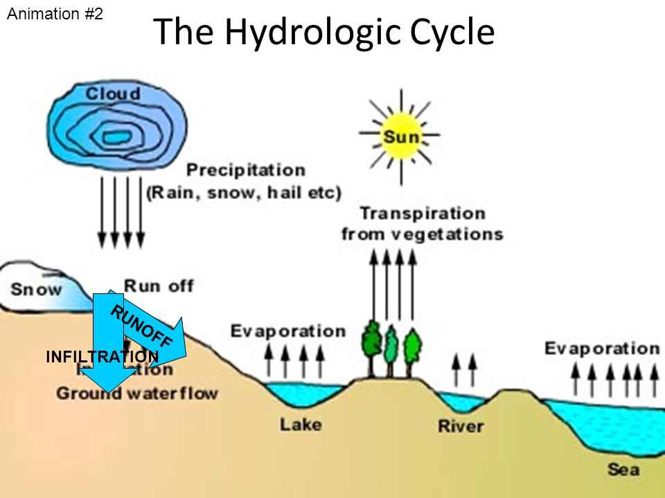 The Hydrologic Cycle Animation #2